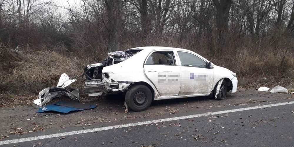 Toyota Corolla з'їхала з дороги та протаранила дерево