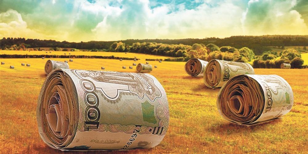 Вінницькі сільгосппідприємства залучили пільгових кредитів на півмільярда