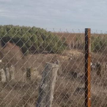 Старе єврейське кладовище тепер не затопчуть