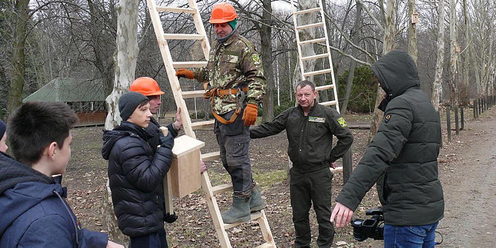 На Вінниччині лісівники розвішають 18600 шпаківень та синичників