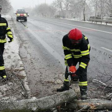 Вінницькі рятувальники розчищали шляхи від повалених дерев