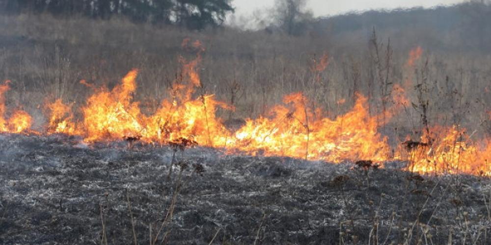 У Вінниці та області горить трава — за добу ліквідовано дві пожежі