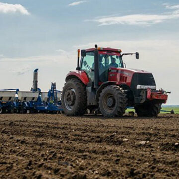 На Вінниччині посіяли близько 40% ярих зернових і зернобобових ранньої групи