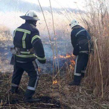 На Вінниччині за добу пожежники ліквідовали три пожежі сухої трави
