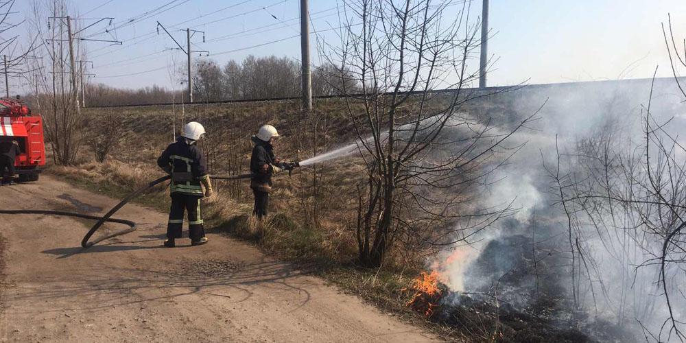 На Вінниччині за минулу добу ліквідовано 43 пожежі в екосистемах