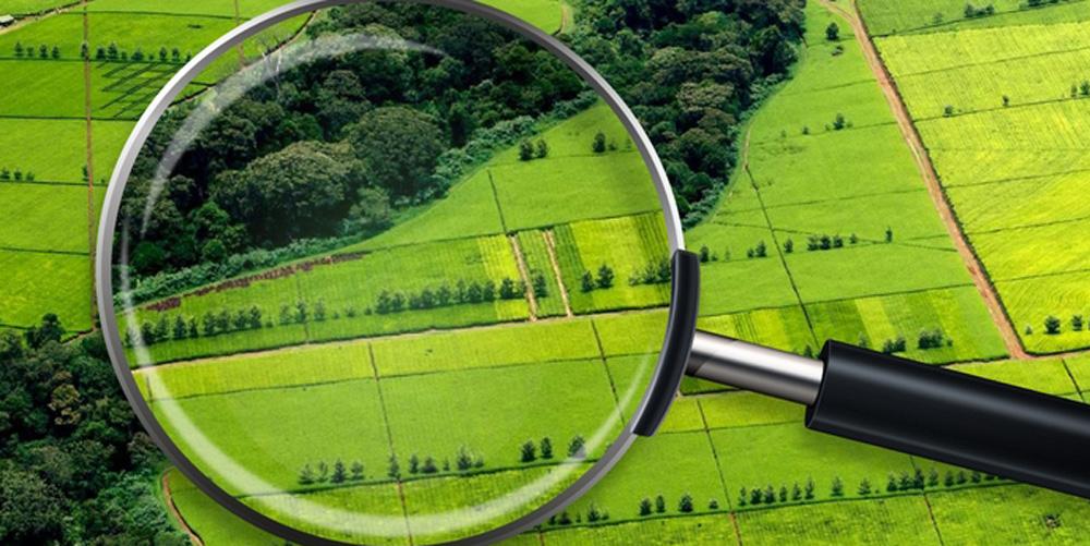 На Вінниччині у комунальну власнысть може перейти 2,3 га земель вартістю 126 тис. грн