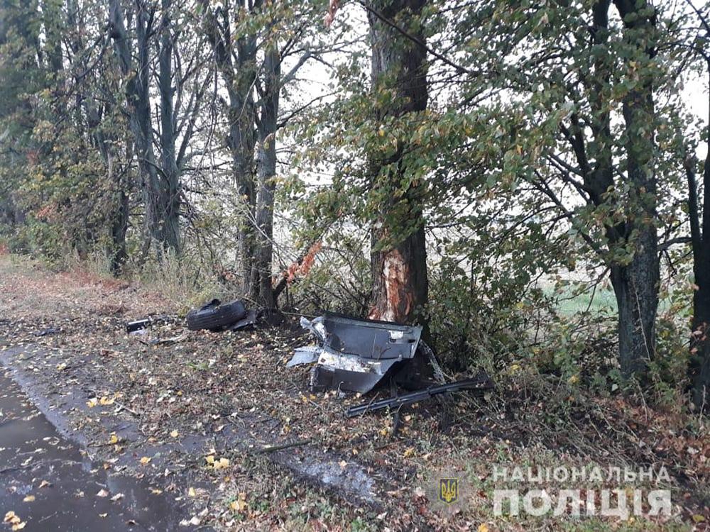 На Вінниччині Land Cruiser Prado  зіткнувся з деревом та перекинувся. Водій загинув