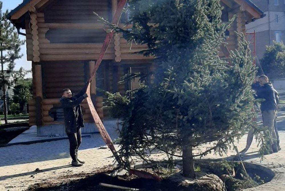 В Подільському зоопарку завершують роботи над будівлею резиденції Святого Миколая