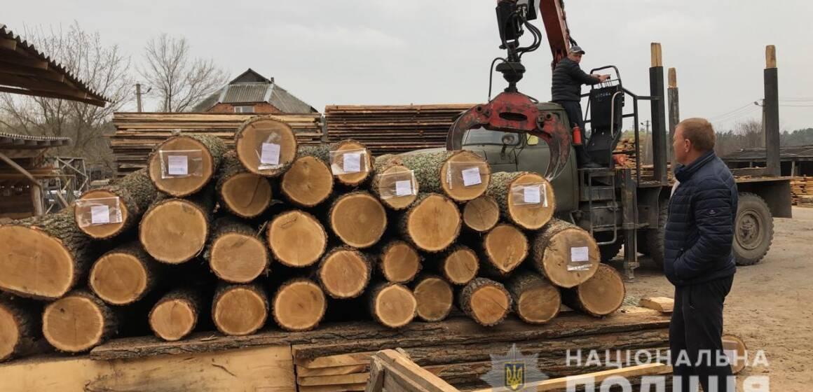 На Вінниччині поліція викрила злочинну групу, яка розкрадала лісопродукцію