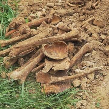 Під час будівельних робіт у Вінниці знайшли людські рештки