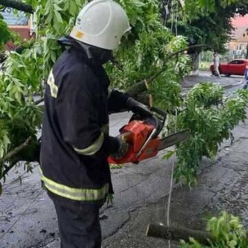 Наслідки негоди на Вінниччині ліквідовували рятувальники