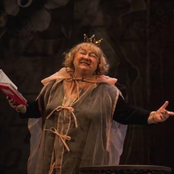 Зіркові актори і море сміху! 28 вересня вистава «Жениха викликали, дівчата» у Вінниці
