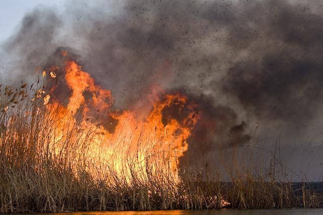 За добу на Вінниччині сталось 12 пожеж